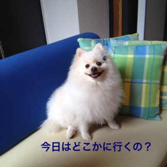 fc2blog_20130722213524d45.jpg