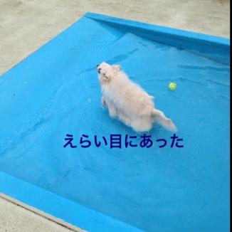 fc2blog_20130723195711381.jpg