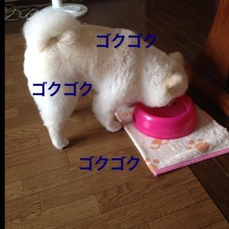 fc2blog_201307282019547dd.jpg
