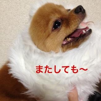 fc2blog_20130808131438f3a.jpg