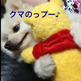 fc2blog_20130810172309bc0.jpg