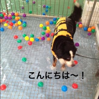 fc2blog_20130814203541ab7.jpg