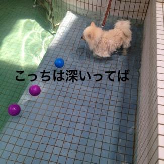 fc2blog_2013081420395700a.jpg