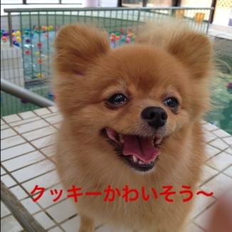 fc2blog_2013081521364461d.jpg