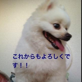 fc2blog_20130816213308794.jpg