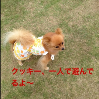 fc2blog_201308211809016e7.jpg