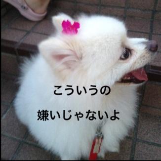 fc2blog_201308302017114a1.jpg