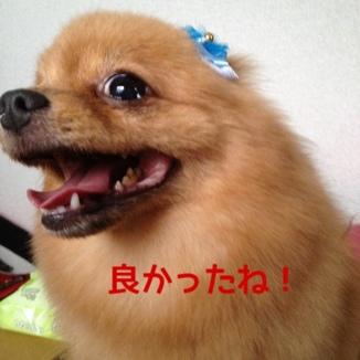 fc2blog_201309212157385b5.jpg
