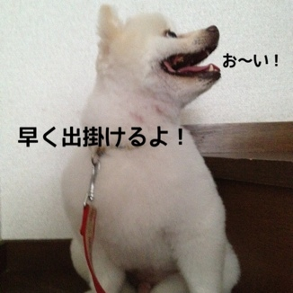 fc2blog_20130921220318e28.jpg