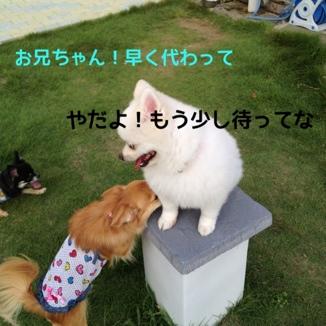 fc2blog_20130925201839b95.jpg