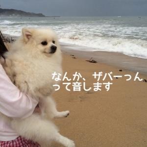 fc2blog_20141028195856ee1.jpg