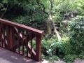 中自然の森公園1