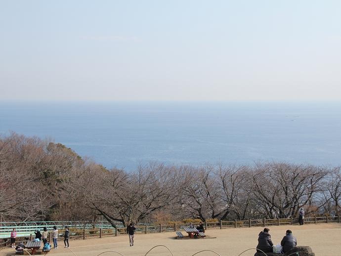 湘南の海 二宮町吾妻山公園展望台