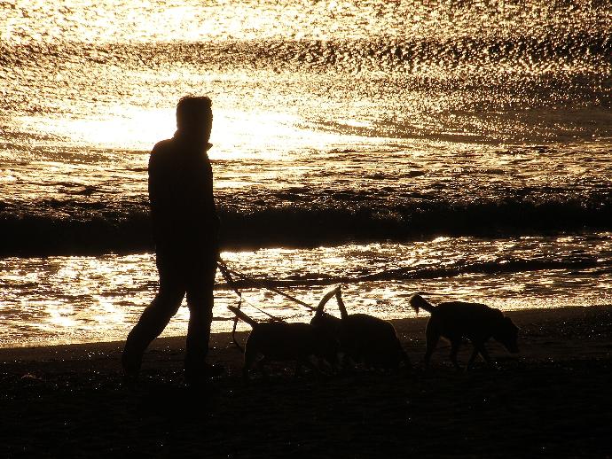 夕暮れに向かう鵠沼海岸