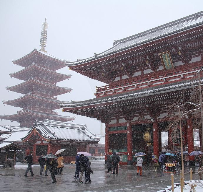 雪の浅草寺 宝蔵門と五重塔