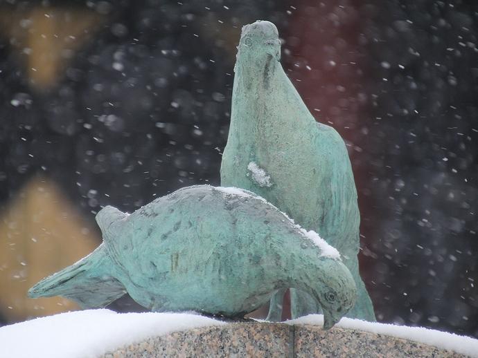 鳩ポッポの歌碑 鳩が寒そうね