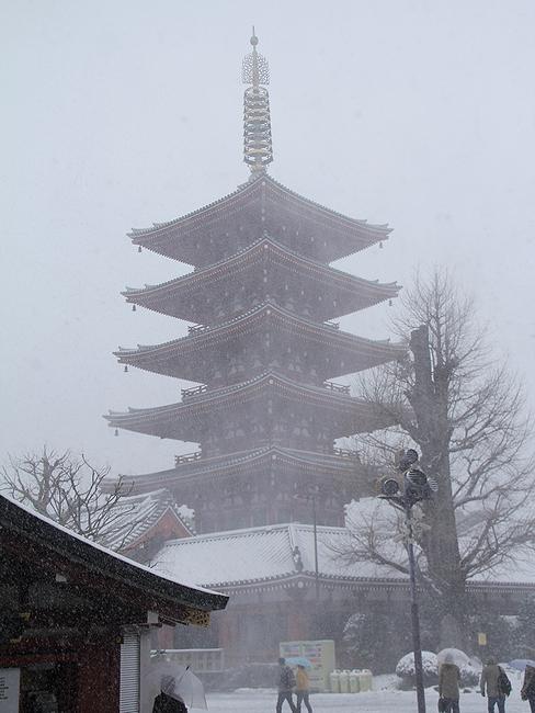 吹雪に霞む五重塔 東京・浅草寺