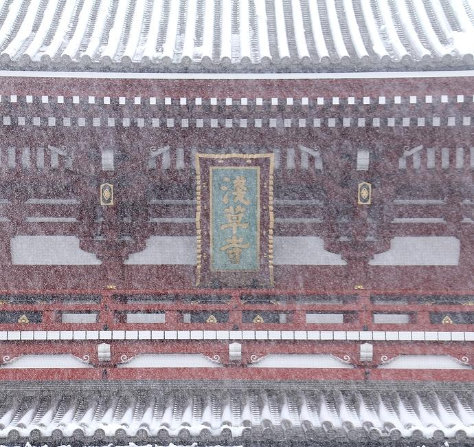 雪で霞む浅草寺宝蔵門