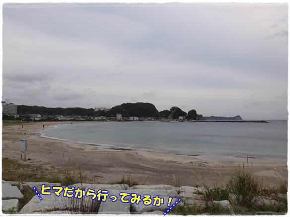 20141104-50.jpg