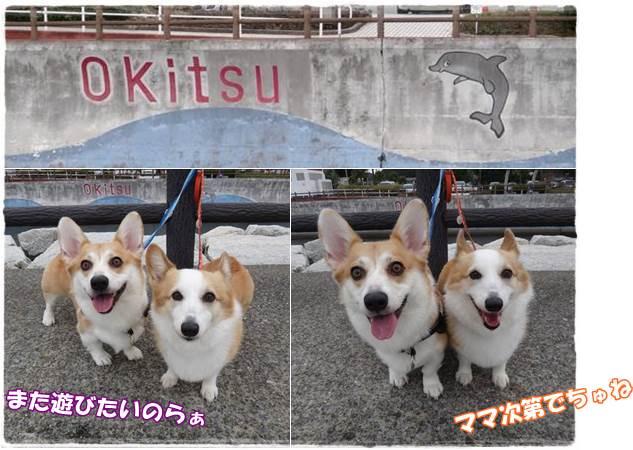 20141105-12A.jpg