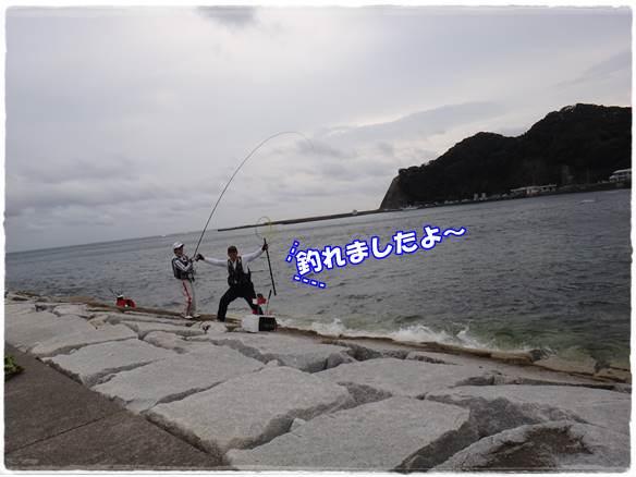 20141105-9.jpg