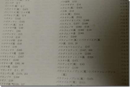 DCS_0126_01