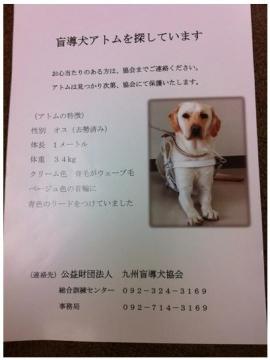 2012-04-12_180541.jpg