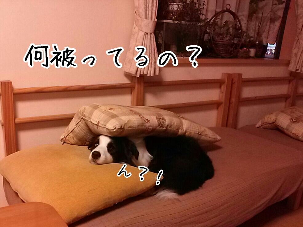 fc2_2013-10-18_13-47-59-891.jpg