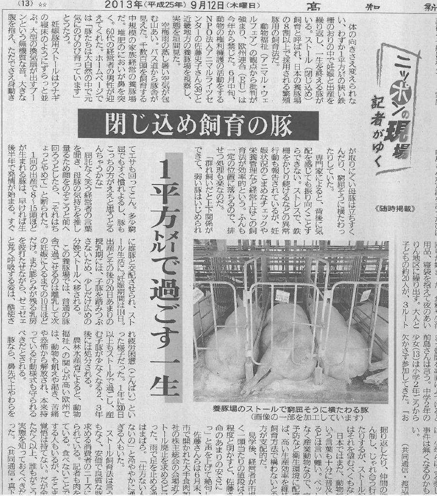 2013年9月12日高知新聞妊娠ブタ記事 画像