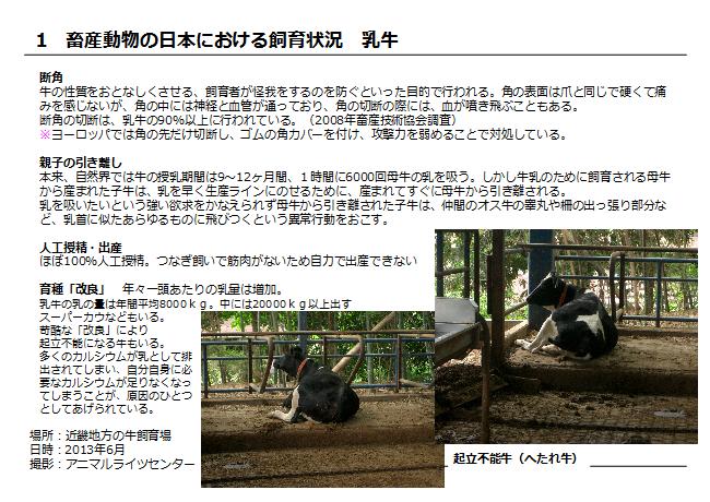 畜産動物7