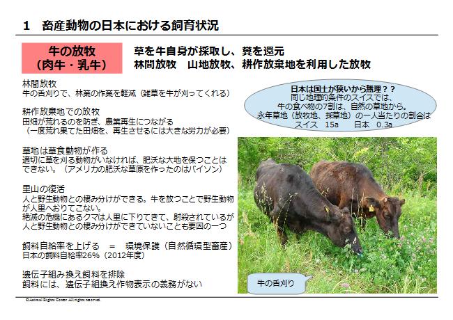 畜産動物10