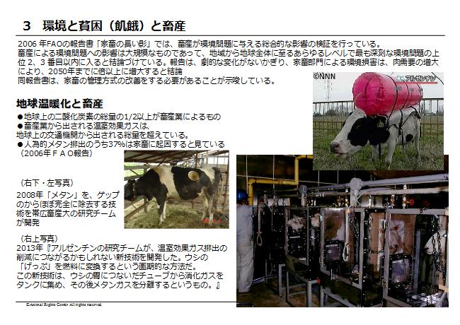 畜産動物28
