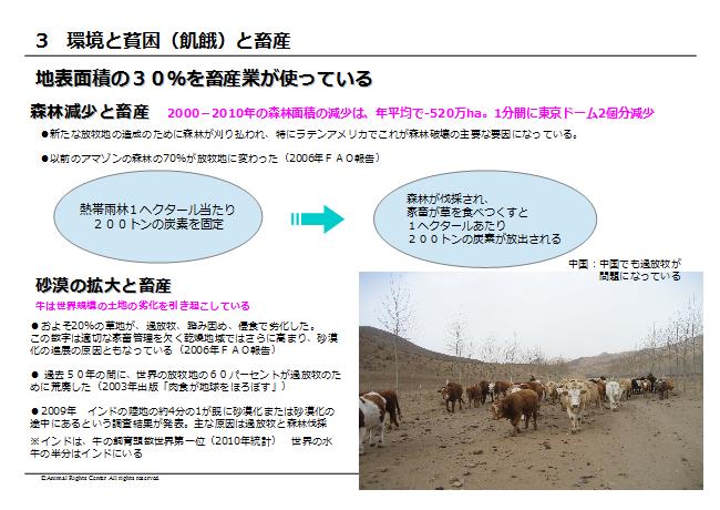 畜産動物29