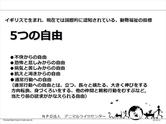 44_R.jpg