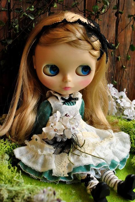Alice-4.jpg