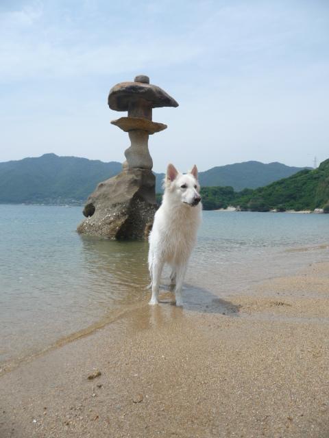 本当に・・・和風な浜辺です★エース★