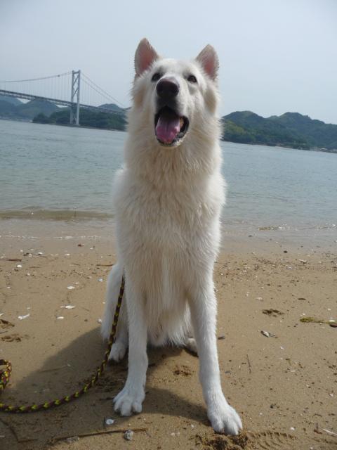 海風気持ち良いね~