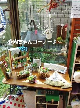 m+Shop♪