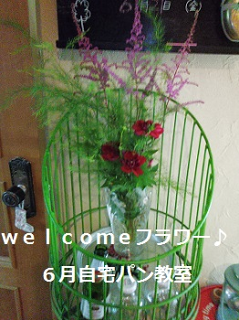 welcomeフラワー