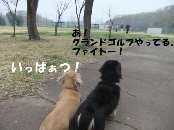 写真743(№216用)1
