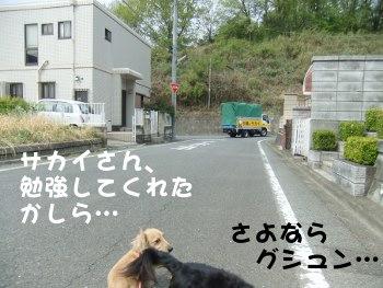 写真754(№218用)1