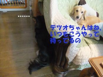 写真766(№221用)1