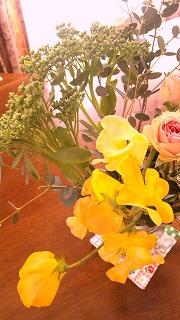 2014春の花