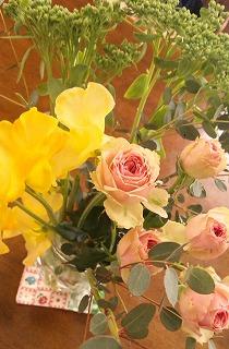 2014春の花2