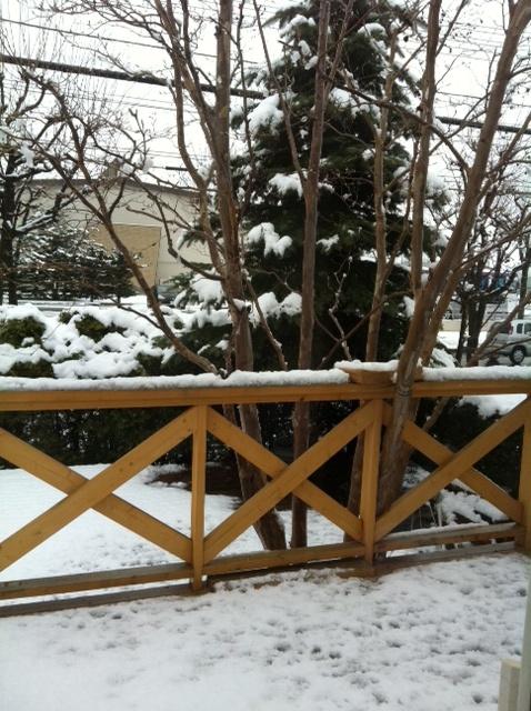 2013 5.6の雪