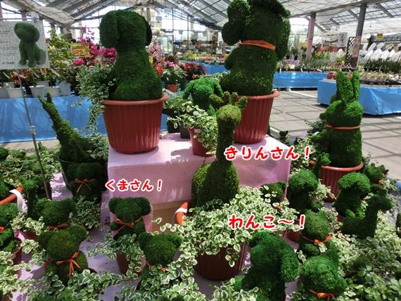 1304_20130713104322.jpg