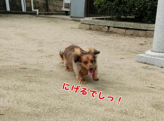 1505_20130715184626.jpg