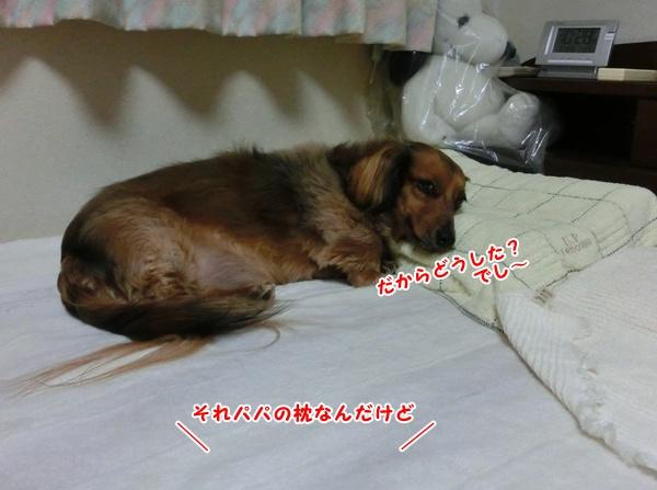 3006_20130430184353.jpg