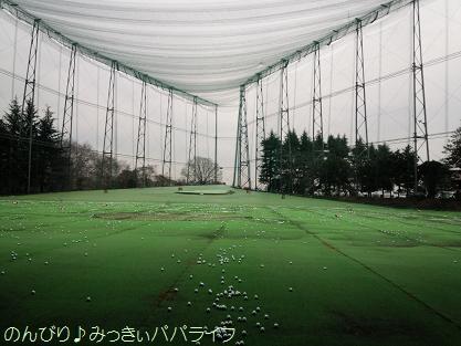 golf6082.jpg