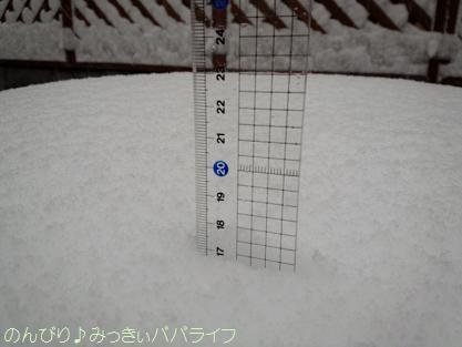 snow2014020802.jpg
